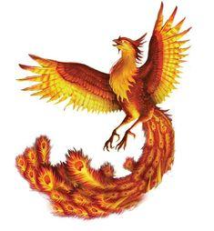 Phoenix Painting, Phoenix Drawing, Phoenix Art, Mythical Birds, Mythical Creatures Art, Fantasy Creatures, Phoenix Bird Tattoos, Phoenix Tattoo Design, Phoenix Animal