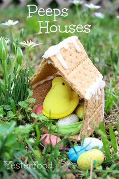 from Yesterfood : Peeps Houses to make at Easter. Graham crackers, Peeps, Candy Eggs & Jelly Beans, Edible Easter Grass (Target) and thick Frosting.