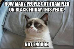 grumpy-cat-meme-people-get-trampled-black-friday-this-year-not-enough3-600x400.jpg (600×400)