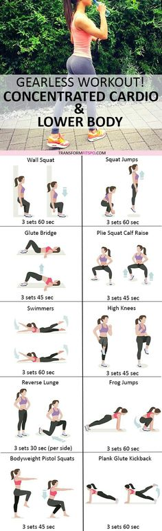 lower body and glutes