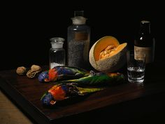 Robyn Stacey. Butler's Tray, 2009. - I love the intense detail, colour and contrast captured in these still life images of museum collections. The traditional subject matter and the way it is arranged accurately emulates historical still life painting.