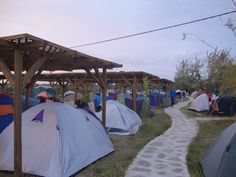 Dolphin Camping in Sfantu Gheorghe, Danube Delta Danube Delta, Budapest, Dolphins, Outdoor Gear, The Good Place, Cruise, Camping, River, Tent