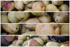 Box Organic Pears Organic Food Market, Special Filter Copyspace Stock Footage | Royalty-Free Stock Photo Library | 10390405