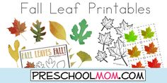 Free Fall Leaf Preschool Printables