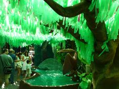 festa-major-de-gracia-bcn Aquarium, Thanks, Fish Stand, Aquarium Fish Tank, Fish Tank, Aquarius