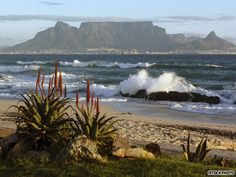 Table Mountain, South Africa    South Africa's Table Mountain is an icon in Cape Town, a magnificent backdrop for the city, with ocean spread in front.    The flat-topped mountain, formed by six million years of erosion, is home to one of the world's most diverse floral kingdoms, with nearly 1,500 species of flower.
