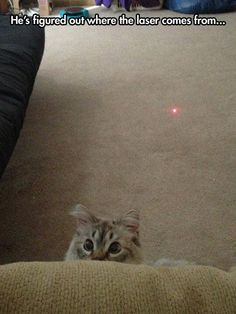 He figured out where the laser dot comes from!