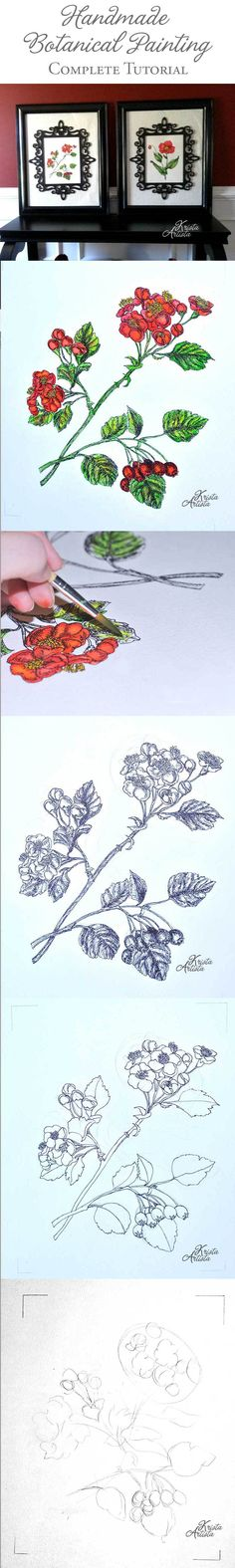 Botanical Paintings Finished  | Found at #pinbellish pin party (weekends sarahcelebrates.com)