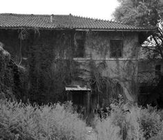 Abandoned Railroad station Clovis, New Mexico