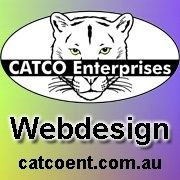 Cathy at CATCO was recommended to me to sort out the disaster that came from employing the wrong people to build my website. Great Website Design, Affordable Website Design, Web Design, Online Marketing Services, Great Websites, The Visitors, Advertising, Branding, Unique