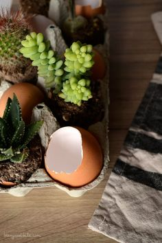 Setting Easter Table: easy DIY Centerpiece with eggshells