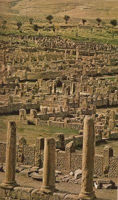 UNESCO World Heritage Site:                                                        Ruins of Timgad.   ALGERIA, 1973