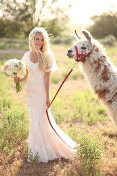 Beautiful dress by Nancy Barrus Couture, but that alpaca is too cute!