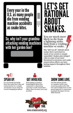 ".. ""vending machine accidents""... ? Do these occur with any sort of frequency? Secondly, HOW, exactly does a vending machine 'hurt' someone? I myself thought they were fairly docile creatures. Who knew?!"