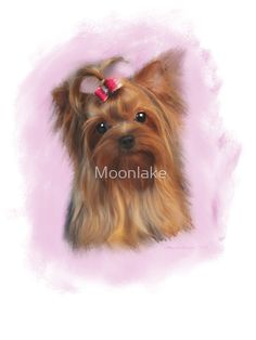 Yorkshire Terrier Digital Painting