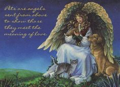 Pets are angels sent from above to show those they meet the meaning of love.