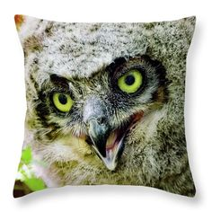 Who's pillow is this?  Well it's yours, just come order one.