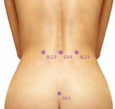 GV4 or Governing Vessel 4 is another important acupressure point for lower back pain which can be found between the vertebrae at the waistline at the same level as acupressure point Bladder 23.