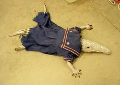 Baby gator, ceramic, wearing a 1920's childs sailor dress By Michaela Whitney