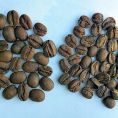 The biggest problem affecting Hawaiian coffee is one you can't see: #Counterfeit Hawaiian (usually #Kona) coffee. (Left #Kaucoffee - right Columbia). Just this week one of Hawaii's largest coffee mills & roasters on the Big Island was federally indicted foreclosed upon and now their assets are being liquidated... for years of counterfeiting. (If you follow Hawaiian coffee you'll probably know their name. While we'd rather not post their identity here if you send us an email we'll respond…