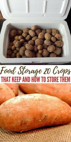 20 Crops That Keep and How to Store Them - Food storage is my families top priority it always has been and probably always will be. I feel pretty confident that in 5 years we will be spending minimal on our groceries. Survival Food, Homestead Survival, Survival Tips, Prepper Food, Survival Skills, Survival Shelter, How To Store Potatoes, Storing Potatoes, Grow Potatoes