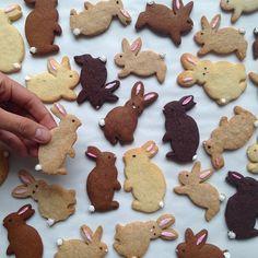 "Gefällt 172 Mal, 20 Kommentare - Patti Paige (@bakedideas) auf Instagram: ""Bunnygram  #eastercookies #easter #assortedflavors #bunnies again"""