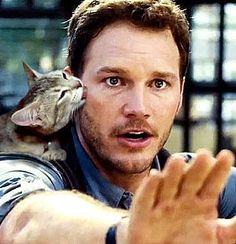 As if you didn't already love Chris Pratt – imagine him in a movie full of cats
