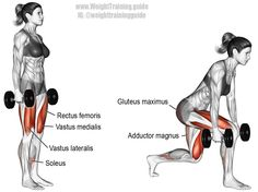 Dumbbell forward leaning lunge. A compound lower-body exercise. Target muscles: Gluteus Maximus and Quadriceps (Rectus Femoris, Vastus Lateralis, Vastus Medialis, and Vastus Intermedius). Synergistic muscles: Adductor Magnus and Soleus. Dynamic stabilizers (not highlighted): Hamstrings and Gastrocnemius. Visit site for proper form.