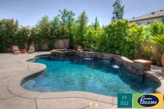 Freeform Swimming Pools - Premier Pools & Spas - Pool Builders and Contractors - Small Backyard Pools, Backyard Pool Designs, Small Pools, Swimming Pools Backyard, Swimming Pool Designs, Pool Landscaping, Natural Landscaping, Backyard Waterfalls, Pool Spa