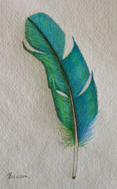 Teal Feather original coloured pencil drawing by anne4bags