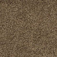 Best Stainmaster Soul Mate Mentor Textured Indoor Carpet La Z 400 x 300