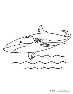 Shortfin Mako Shark Coloring Page If You Like This Share It With Your Friends They Will Love These Sheets