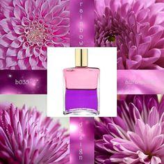 B/035 Aura-Soma Inspiration