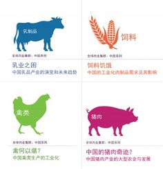"""China's dominance in the global meat market: the Chinese translation of the """"Global Meat Complex""""   Institute for Agriculture and Trade Policy"""