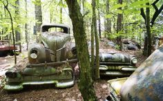 Deep in the forests of White, Ga., there is a 32 acre property filled with 4,000 decaying cars. It remains on of the most known car graveyards in the world. Join us for a visual tour:
