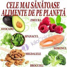Broccoli, Cantaloupe, Avocado, Recipies, Fruit, Healthy, The Body, Healthy Meals, Food Items