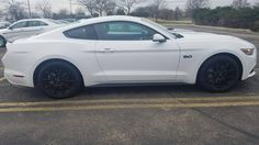 My new to me 2016 GT with Black Accent Package #Mustang #usedcar #car #cars