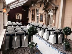 Navy satin sashes, aisle runner with navy petals and bay trees at The Manor Hotel Yeovil
