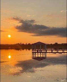 College Park Orlando, Reflection Photos, Florida Beaches, Sunrise, Celestial, Outdoor, Outdoors, Outdoor Games, The Great Outdoors
