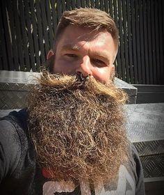 Epic Beard, Gay Beard, Beard No Mustache, Great Beards, Awesome Beards, Beard Styles For Men, Hair And Beard Styles, Men Fashion, Hair