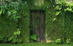 Door in a wall in Brief Garden, Kalawila, Sri Lanka - 42-27979953 - Rights Managed - Stock Photo - Corbis