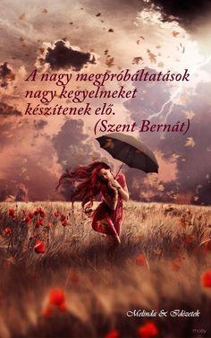 Woman, storm, wind, poppies and umbrella Umbrella Art, Under My Umbrella, Photo Rose, Eye Of The Storm, Singing In The Rain, Fantasy Photography, Jolie Photo, Oeuvre D'art, Rainy Days