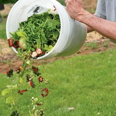 The Secret To Converting Lawn To Garden