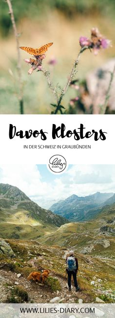 Going hiking in in Switzerland is definitely a good idea. Davos, Zermatt, Stuff To Do, Things To Do, Good Things, Places In Switzerland, Chur, Go Hiking, Secret Places