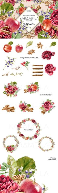 Cinnamon and Apples Clipart in Graphics  Illustrations by Karamfila on @creativemarket
