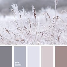 """""""dusty"""" beige, beige and gray, brown and gray, coffee colour, colour of cream, colour of paints for a house, colour palette for interior, cream colour, gray and beige, gray beige, gray-brown, light gray, monochrome beige"""