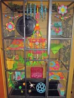 flower Theme Love the idea of the hanging baskets Sugar Glider Baby, Sugar Gliders, Baby Glider, Rat Cage, Sugar Bears, Parrot Toys, Pet Rats, Flying Squirrel, Bird Toys