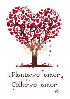 Planta-se amor....