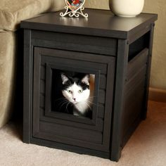 New Age Pet Habitat 'n Home Cat Litter Loo - Cats are cool, but their litter areas are not, so keep those not-so-pretty litter boxes out of sight with the Habitat 'n Home Litter Loo. The box tuck. Hidden Litter Boxes, Litter Box Covers, Litter Box Enclosure, Cat Dog, Cat Supplies, Cat Furniture, Furniture Ideas, Furniture Storage, Table Furniture
