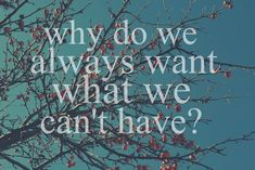 quotes about wanting someone you can't have | why do we always want what we can't have